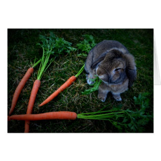 Bunny Munches Carrots / Birthday Card