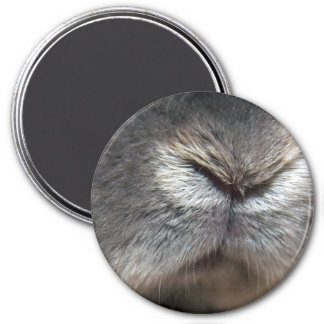 Bunny nose (magnet) 3 inch round magnet