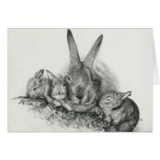 Bunny Notecards Greeting Cards