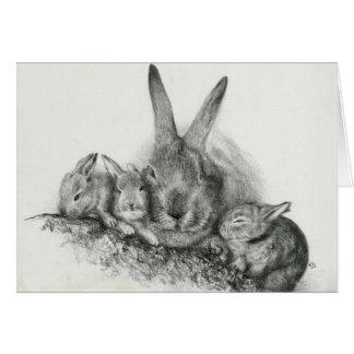 Bunny Notecards Card
