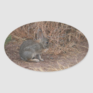 Bunny Oval Sticker