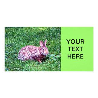 Bunny Custom Photo Card
