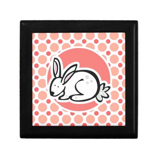 Bunny; Pink & Coral Polka Dots Jewelry Box