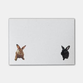 Bunny Post-Its Post-it® Notes
