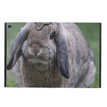 bunny powis iPad air 2 case