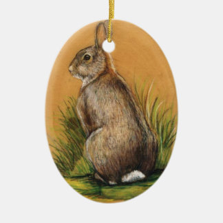 Bunny Rabbit Art Oval Ornament