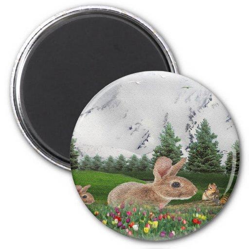 Bunny Rabbit art Refrigerator Magnets