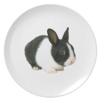 Bunny Rabbit Black & White Plate