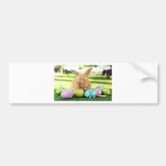 Bunny Rabbit Bumper Sticker