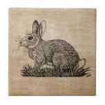 Bunny Rabbit Burlap Ceramic Tiles