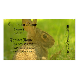 Bunny Rabbit Business Cards