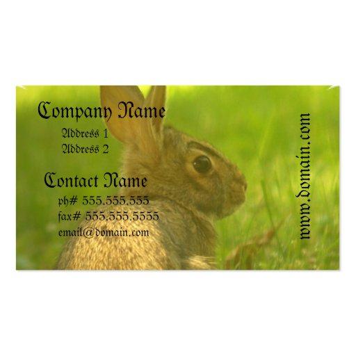 Bunny Rabbit Business Cards