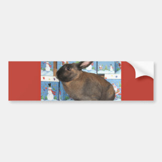 Bunny Rabbit Chritmas with Snowman Holiday Boxes Car Bumper Sticker
