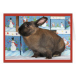 Bunny Rabbit Chritmas with Snowman Holiday Boxes Greeting Cards