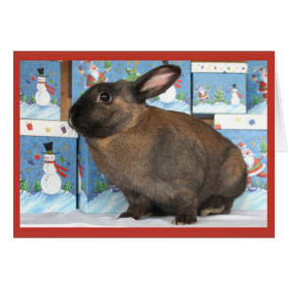 Bunny Rabbit Chritmas with Snowman Holiday Boxes Card