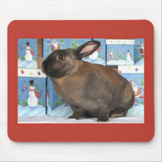 Bunny Rabbit Chritmas with Snowman Holiday Boxes Mouse Pad
