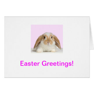 Bunny Rabbit Easter Card