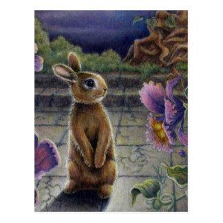 Bunny Rabbit & Flowers Night Dreaming Postcard