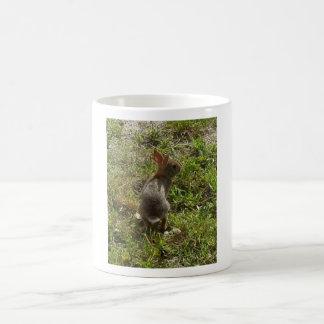 Bunny Rabbit Hare Stuff Coffee Mug