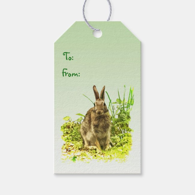 Bunny Rabbit in Grass Pack of Gift Tags