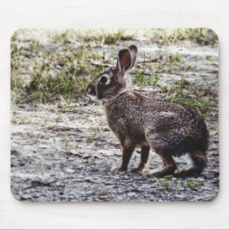 Bunny Rabbit in the Wild Mouse Pads