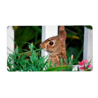 Bunny Rabbit Shipping Labels