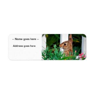 Bunny Rabbit Custom Return Address Label