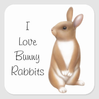 Bunny Rabbit Love Customizable Square Sticker