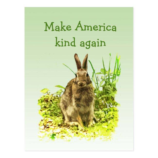 Bunny Rabbit Make America Kind Again Postcard