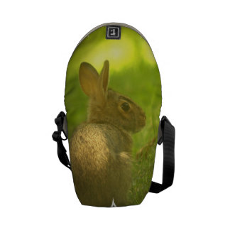 Bunny Rabbit Courier Bags
