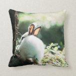 bunny rabbit pillow