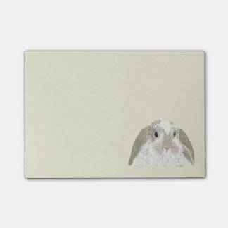 Bunny Rabbit Post-it Notes