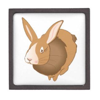 Bunny Rabbit Premium Keepsake Boxes