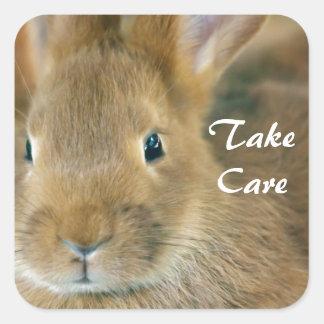 Bunny Rabbit Square Sticker
