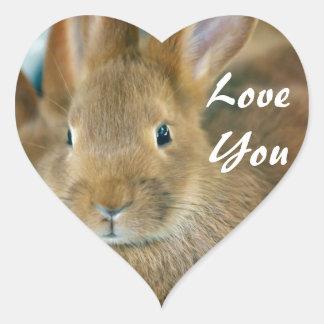 Bunny Rabbit Heart Sticker