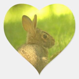Bunny Rabbit  Stickers