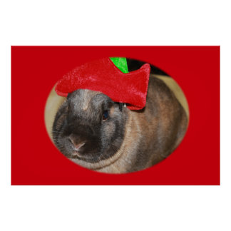 Bunny Rabbit with Santa Hat says  Large Poster