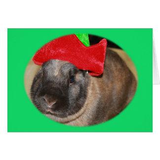 Bunny Rabbit with Santa Hat says Merry Christmas Card