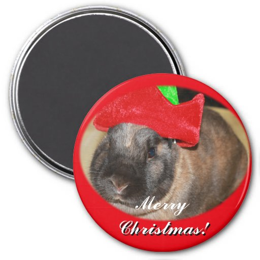 Bunny Rabbit with Santa Hat says Merry Christmas Magnets