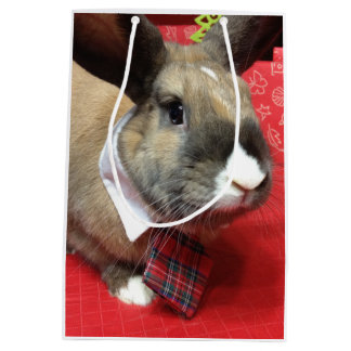 Bunny Rabbit with Tie Gift Bag - Honeybadger MHRR