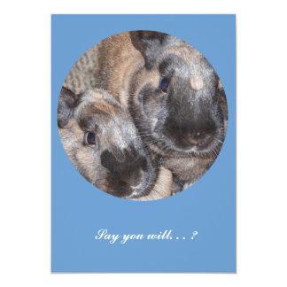 Bunny Rabbits - 2 Brown Silky Bunnies Custom Invitation