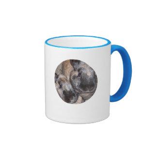 Bunny Rabbits - 2 Brown Silky Bunnies Mug