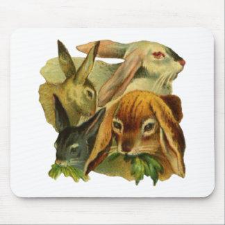 Bunny Rabbits Mouse Pad