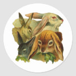 Bunny Rabbits Stickers