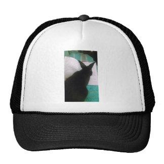 Bunny Reading Trucker Hat