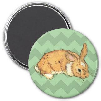Bunny Sage Chevron Duo 3 Inch Round Magnet