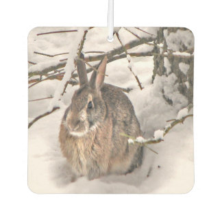 Bunny Seeking Shelter Air Freshener
