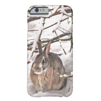 Bunny Seeking Shelter iPhone 6 Case
