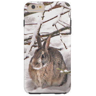 Bunny Seeking Shelter iPhone 6 Plus Case