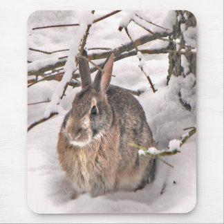 Bunny Seeking Shelter Mouse Pad